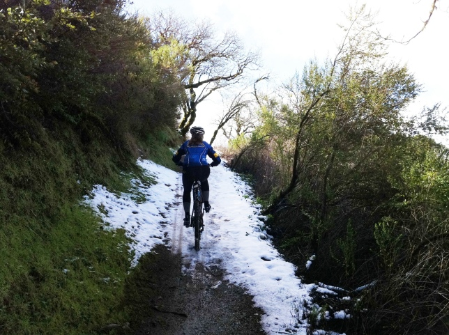 We hit our first real patch of snow climbing the Bella Vista Trail.