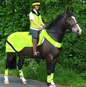 In London, even horses wear high viz.