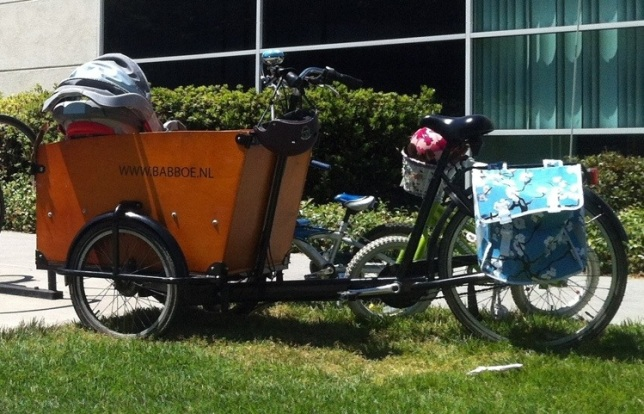 Yes, that's an infant seat in the bucket. I love the sunny colors on the Basil panniers and the helmets.