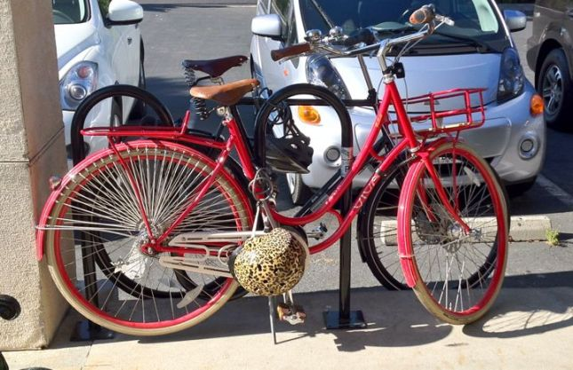 Hobbees Bike Rack New