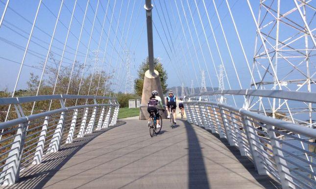 This bike bridge was quite elaborate.