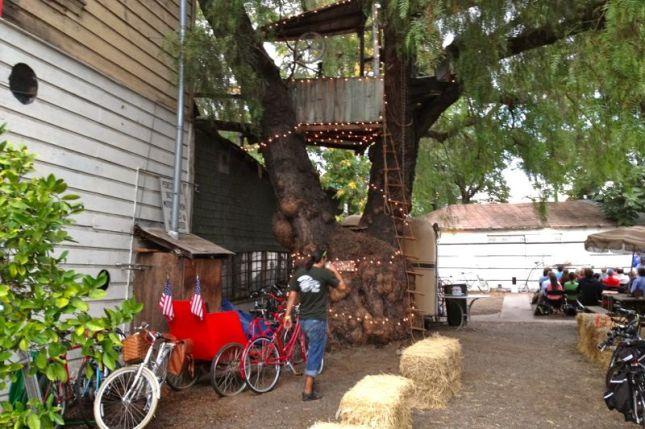 Equally impressive is the ancient California Pepper Tree, complete with tree house.