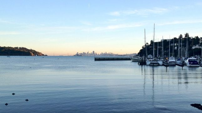 We rode nearly 30 miles but from Tiburon we could still see San Francisco across the bay.