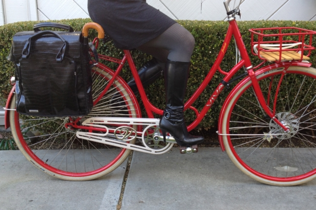 It was easy to look Euro with a bike from Denmark and a bag from Holland.