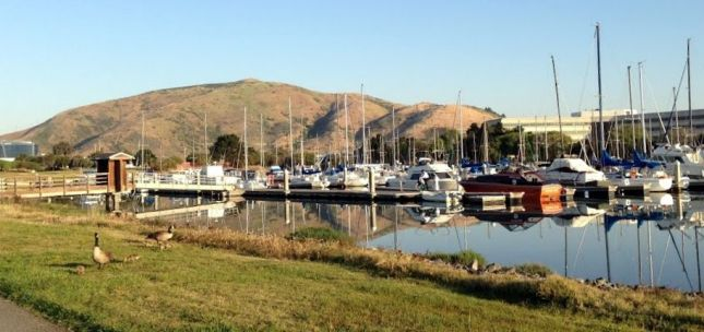 Nadia's work commute takes her past marinas and inlets along the Bay Trail.