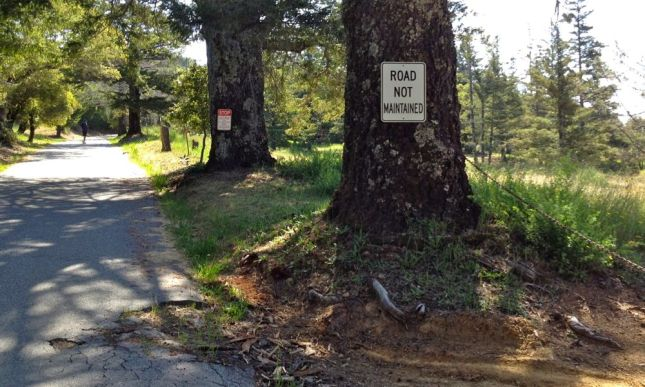 Loma Prieta Road