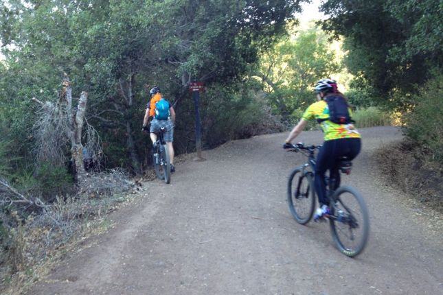 We dropped in from the fireroad onto our first set of switchbacks.