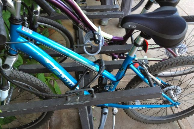 The two bikes parked next to mine used  cable locks and mostly ignored the jaws, like I usually do.