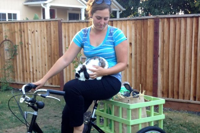 Jessica's bunnies may not ride on the trike, but they love what it brings.