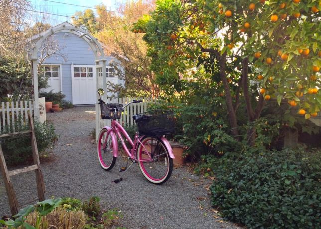 If you're arriving by bike, head down the gravel driveway to the back yard.