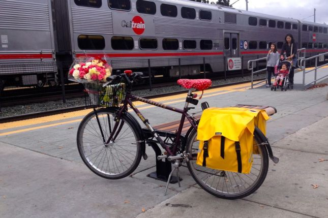 When I headed down to San Jose for the party, I wasn't sure I could lift my bike on the train.