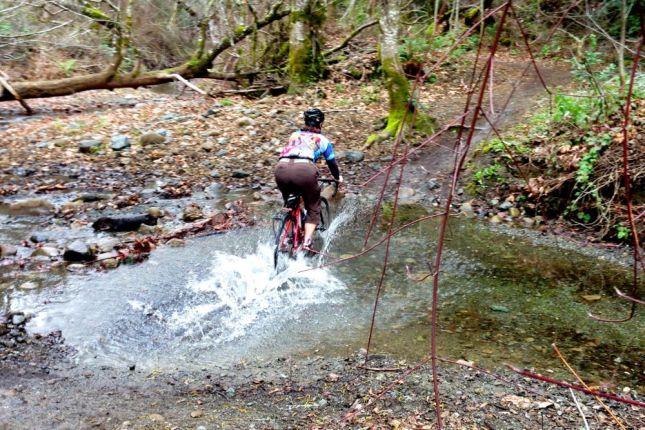 Janet Creek Crossing