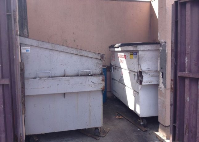 The dumpsters look better than they smelled. The final straw:  little gnats were all over my bike when I returned.