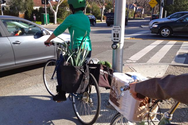 Grocery Bikes