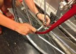 Re-mount the wheel on the bike, making sure that it's aligned to center of the frame. Rebolt or close the skewer and close  brakes.